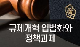 e-규제개혁 입법화와 정책과제