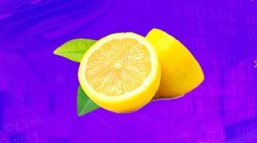 우리 스스로가 만든 레몬시장