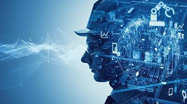 알고리즘 vs. 자율성, 무엇이 더 생산성을 높일까?