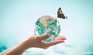 기후변화에 따른 생태계 변화