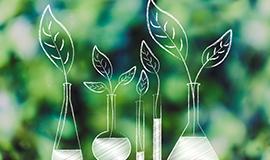 기후변화와 생태계 서비스1