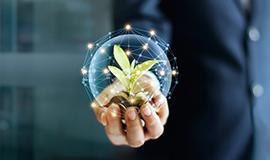 지속가능한 발전과 생태계 서비스2