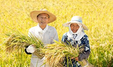 정책 안의 젠더 이슈 5: 농업 분야